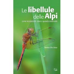 EB01 - Le libellule delle Alpi