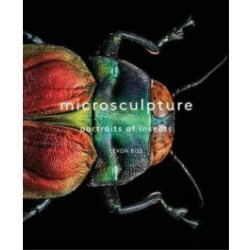 EB12 - Microsculpture - Portraits of Insects