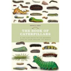EB13 - The Book of Caterpillars