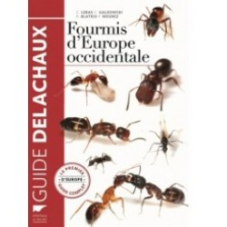 EB14 - Fourmis D'Europe Occidentale